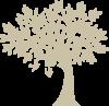 arbre camping dordogne